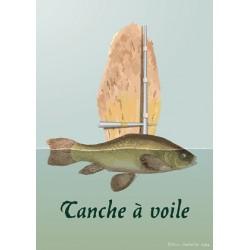 Carte postale Tanche à voile